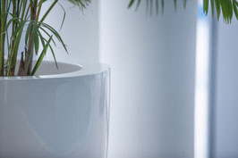 CANNA fiberglass bloembak (hoogglans wit)