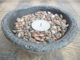 Umbonium schelpen per 0,5 kg