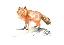 ONLINE-Workshop Aquarellmalerei & Buntstift TIERE