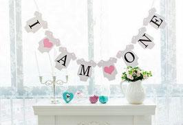 Banner Girlande 1. Geburtstag Cake Smash blau oder rosa