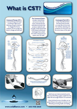"""What is CST?"" Poster with illustrations by Don Ash, PT, CSTA-CP"