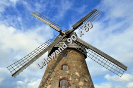 Windmühle auf Leinwand 90 x 60