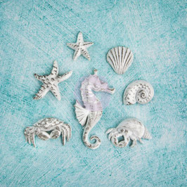 Shabby Chic Treasures Sea