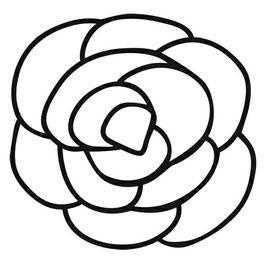 Balzer Bits: TCW2036 Rose