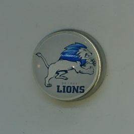 Detroit Lions  Magnet