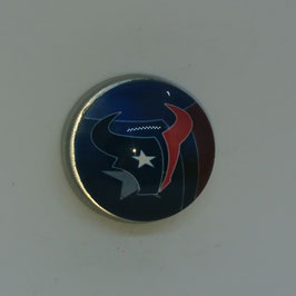 Houston Texans  Magnet