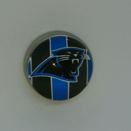 Carolina Panthers Magnet