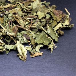 Melissenblätter Krüll ganz (40 g)