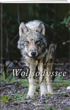 Peter A. Dettling: Wolfsodyssee