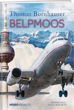 Thomas Bornhauser: Belpmoos