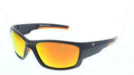HIS Polarized HP67111-2