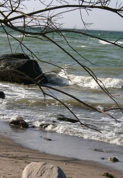 Kräuterwoche an der Ostsee für Frauen 2017