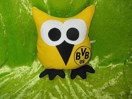 Fußballeule Dortmund