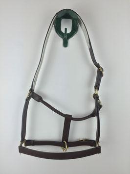 dunkellbraunes Stallhalfter aus Leder mit weißer Polsterung