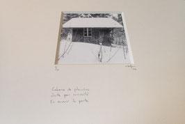 Cabane - tableaux risoux