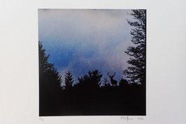 Tableau-haïku - Dans l'aube neuve