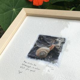 Tableau-haïku - Petit escargot