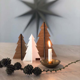 Christmas Trees standing