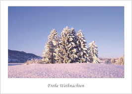 "Weihnachtskarte ""Winter bei Bad Kohlgrub"""