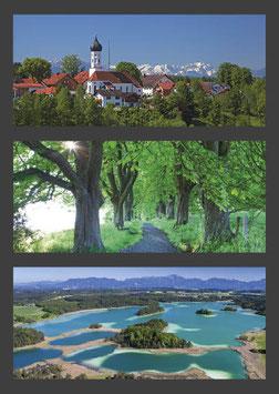 "Postkarte ""Iffeldorf | Allee | Osterseen"""