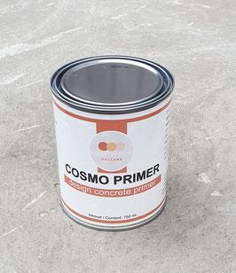 COSMO PRIMER
