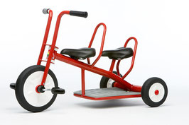 Italtrike Carry 2 Sitzer