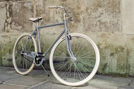 Glanzrad Modell 1920 Stahl grey