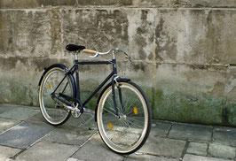 Glanzrad Modell Bluenotte 1s