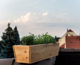 Grüne Smoothie - Box