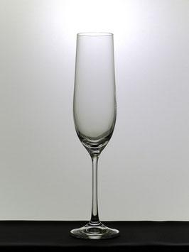 60 Stück Crudo Schaumweingläser. Schaumweinglas für Haushalte und Gastronomie  Maschinenglas für den Alltagsgebrauch.