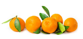 Mandarines (€/Kg)