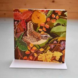 Jenny Wren Greeting Card