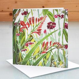 Flame Crocosmia Art Card