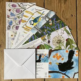 Spring Garden Art Card Multipack