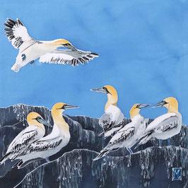 Grassholm Gannets Giclee Batik Print