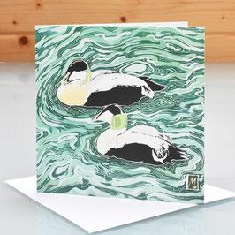 Male Eider Ducks Art Card