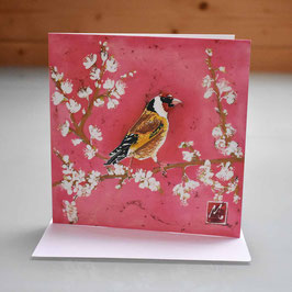 Goldfinch on Blossom Greeting Card