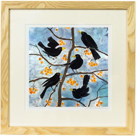 Blackbirds On Yellow Crab Apples Fine Art Print