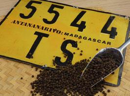 Wilder schwarzer Madagaskar Hochland Pfeffer