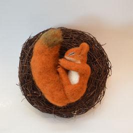 Eichhörnchen im Nest nadelgefilzt