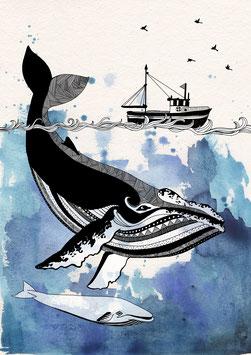 Postkarte 'blue whale'