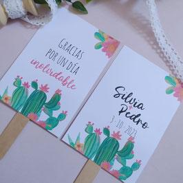 Cactus - Pai pais