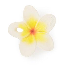 Jouet de dentition Chewy Hawaii la fleur OLI & CAROL