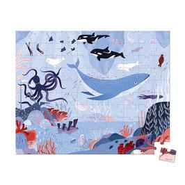 Puzzle Océan Arctique 100 pcs JANOD