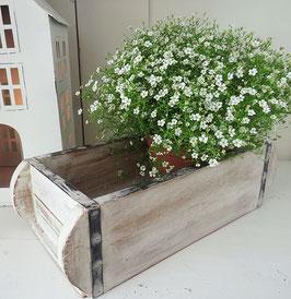 Ziegelform Pflanzkasten Antikbox 32 cm Holz massiv Shabby mit Eisenbeschlag