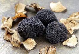 env. 100 grammes de Truffe Uncinatum