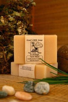 Tea Tree Mint & Orange Goat's Milk Soap ~ All Natural