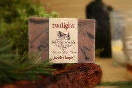 jacob's hope twilight ~ Viewpoint Inn