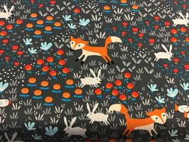 Jersey Fuchs in Blumen