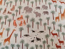 BW Safari/Palmen